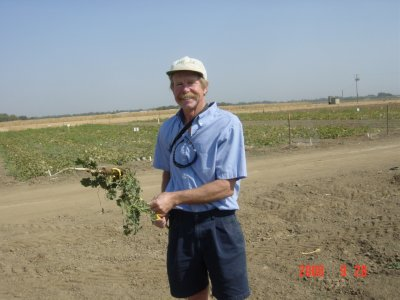 Weed Twister vs Mallow UC Davis - Dr. Tom Lanini