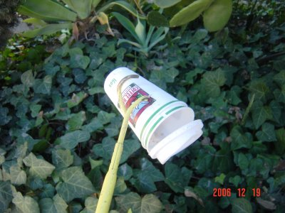 Weed Twister vs Plastic Cup