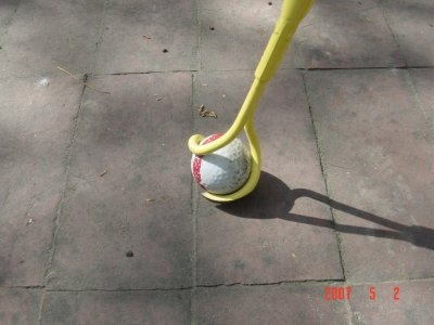 Click to see larger image of the Weed Twister walking stick on bricks!